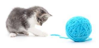 Chat avec la boule du fil Image libre de droits