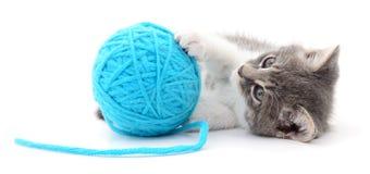 Chat avec la boule du fil Photographie stock libre de droits