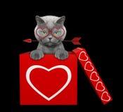 Chat avec la flèche se reposant dans la boîte de valentines D'isolement sur le noir Images libres de droits