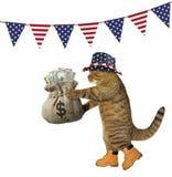 Chat avec un sac d'argent sous des drapeaux illustration de vecteur
