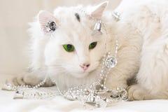 Chat blanc avec une guirlande. Photographie stock libre de droits