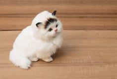 Chat blanc de poupée sur la table en bois, jouet de Cat Plush pour des enfants Photo libre de droits