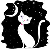 Chat blanc sur un ciel nocturne noir, les étoiles et la lune Photographie stock libre de droits