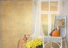 Chat d'automne Photographie stock libre de droits