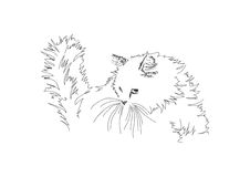 Chat d'illustration Images stock