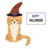 Chat dans le chapeau de Halloween Photo libre de droits