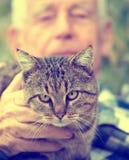 Chat dans le recouvrement du ` s de vieil homme Photos stock
