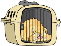 Chat dans le transporteur d'animal familier Photos libres de droits