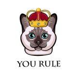 Chat de bande dessinée dans la couronne Chat siamois, chat thaïlandais Illustration de vecteur illustration de vecteur