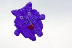 Chat de cerf-volant Images stock