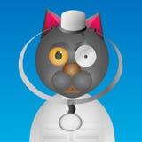 Chat de docteur Images libres de droits