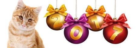 chat de gingembre des 2017 textes avec des boules de Noël avec le ruban Photo stock