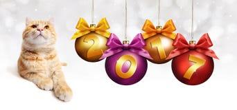 chat de gingembre des 2017 textes avec des boules de Noël avec le ruban Photos stock
