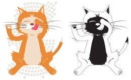 Chat de Kitty Image stock