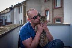 Chat de la savane avec le propriétaire caressant Photographie stock libre de droits