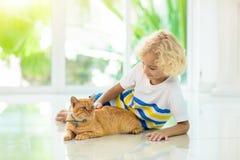 Chat de maison d'alimentation des enfants Enfants et animaux familiers photo libre de droits