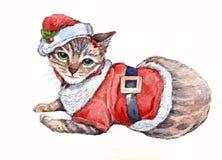 Chat de Noël Images libres de droits