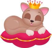 Chat de princesse sur l'oreiller Image stock