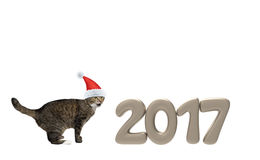 Chat de Santa près de 2017 nombres de nouvelle année Photos libres de droits