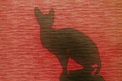 Chat de silhouette à la fenêtre rouge Photographie stock libre de droits