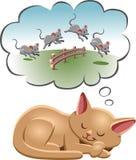 Chat de sommeil Images libres de droits