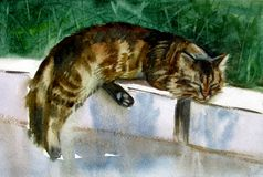 Chat de sommeil Illustration d'aquarelle photographie stock libre de droits