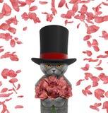 Chat de valentines dans un cylindre de haut chapeau avec des roses Images libres de droits
