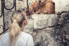 Chat domestique attentif de caresse de femme sur des escaliers dans la vieille ville européenne Images stock