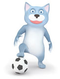 Chat et bille de football Photo libre de droits
