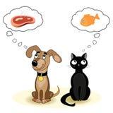 Chat et chien rêvant de la nourriture Photos stock