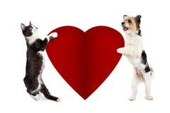 Chat et chien tenant Valentine Heart vide Photo stock