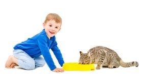 Chat et garçon mangeant de la même cuvette Photos stock