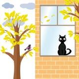 Chat et oiseau en automne Photographie stock libre de droits