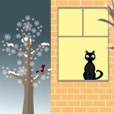 Chat et oiseau en hiver Photos stock
