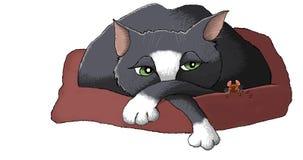 Chat et souris Images stock