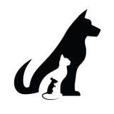 Chat et souris de chien Images stock
