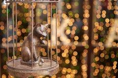 Chat forgé dans une cage sur le fond des lumières lumineuses de bokeh de defocus images libres de droits