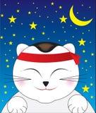 Chat heureux avec des étoiles Photo stock