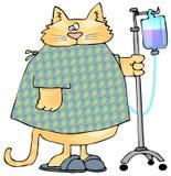 Chat malade illustration de vecteur