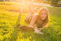 Chat mignon et femme jouant avec lui le mode de vie, l'amitié et le concept extérieurs de propriétaire d'animal familier Photo libre de droits