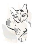 chat noir Images libres de droits