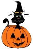 Chat noir en potiron Image stock