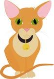 Chat orange drôle avec de grands yeux verts d'isolement sur le blanc Photo stock