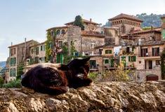 Chat prenant un bain de soleil sur un mur - Valldemossa, Majorque photographie stock