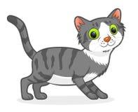 Chat rayé de dessin animé Photographie stock libre de droits