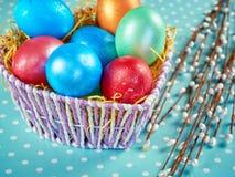 Chat-saule de Pâques et oeuf de pâques sur le fond authentique Carte de Pâques heureuse Photos stock
