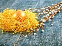 Chat-saule de Pâques et oeuf de pâques sur le fond authentique Carte de Pâques heureuse Images stock