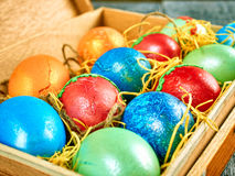 Chat-saule de Pâques et oeuf de pâques sur le fond authentique Carte de Pâques heureuse Photo libre de droits