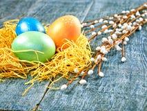 Chat-saule de Pâques et oeuf de pâques sur le fond authentique Carte de Pâques heureuse Image stock