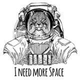 Chat sauvage Lynx Bobcat Trot Astronaut Costume d'espace Image tirée par la main de lion pour le tatouage, T-shirt, emblème, insi Photo libre de droits